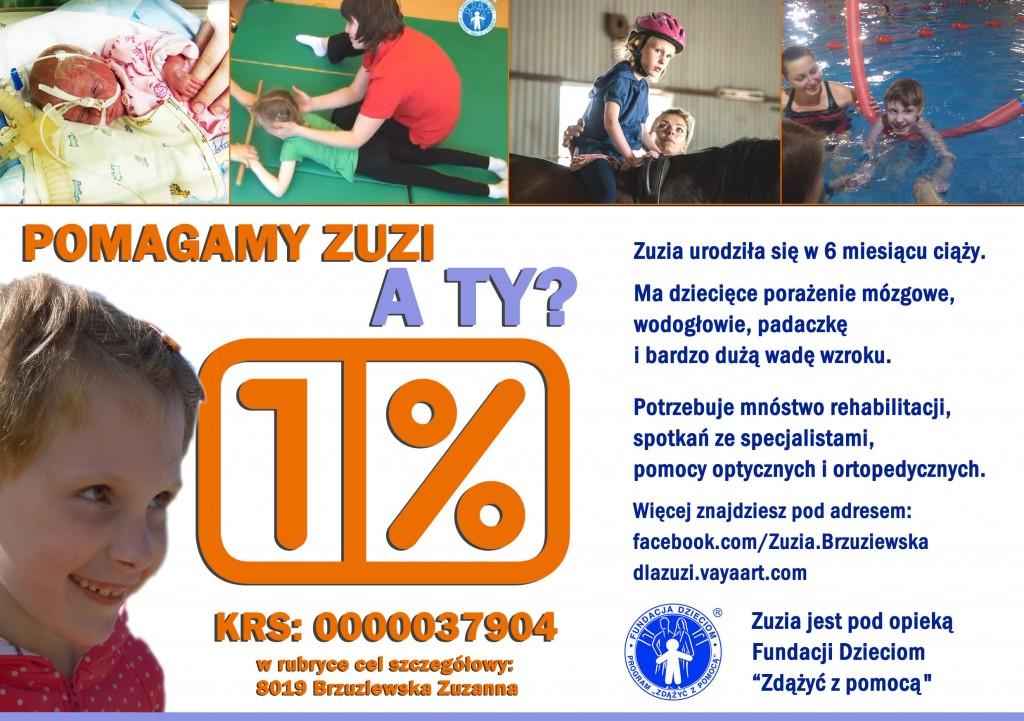 dlazuzi20141